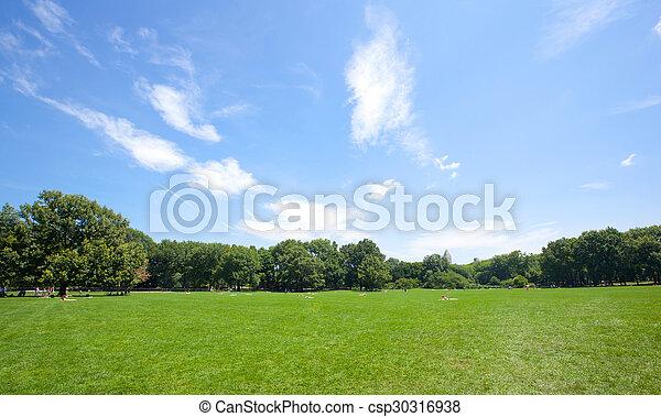 parque, soleado, central, día - csp30316938