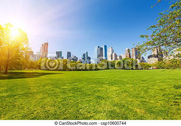 parque, soleado, central, día - csp10600744