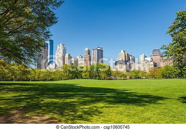 parque, soleado, central, día - csp10600745