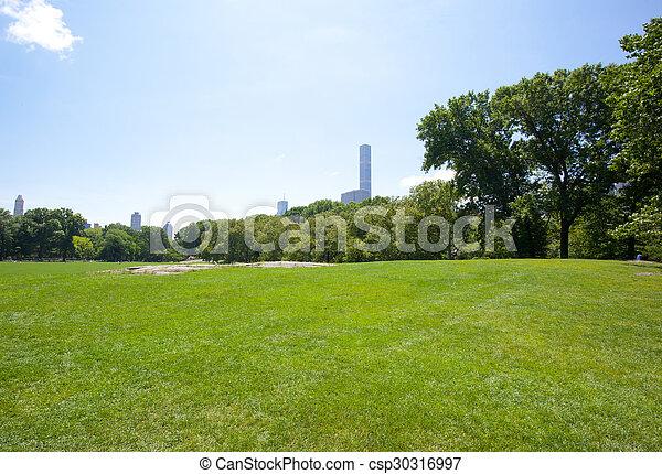 parque, soleado, central, día - csp30316997