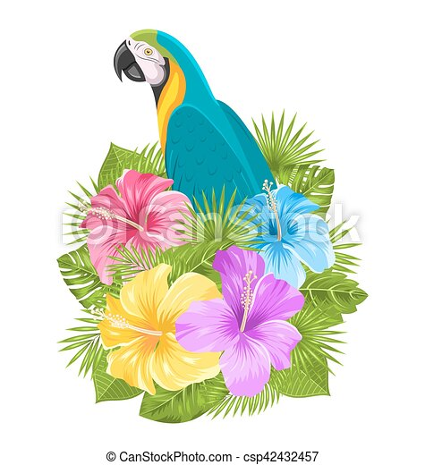 Illustration Parrot Ara Colorful Hibiscus Flowers Blossom And