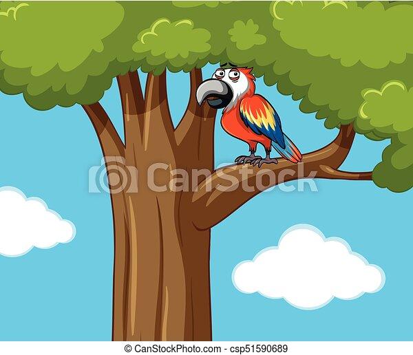 Parrot bird on the branch - csp51590689