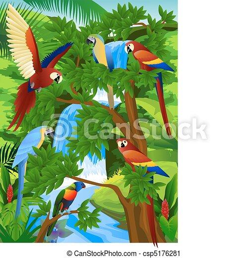 Parrot - csp5176281