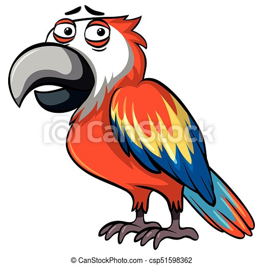 parrot with serious face illustration clip art vector search rh canstockphoto com clipart parrot outline parrot clipart gif