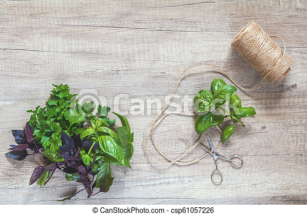 Parsley and basil bunch of bouquets, scissors and rope cord on light wooden surface. - csp61057226
