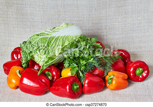 Parsley, Beijing cabbage, fennel, vegetables lies on a gray canvas - csp37274870