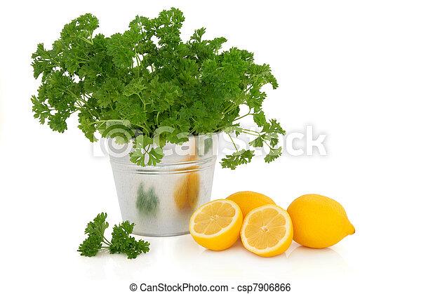 Parsley Herb and Lemon Fruit - csp7906866