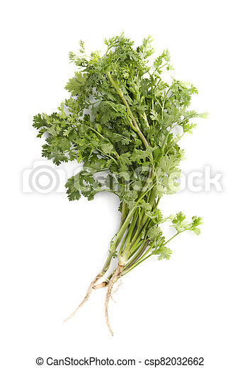 parsley isolated on white background., top view - csp82032662