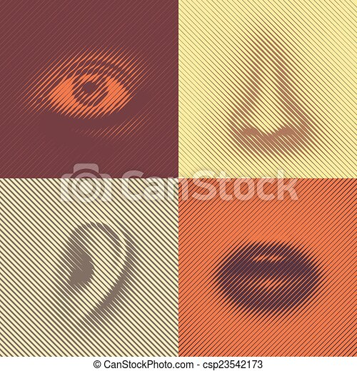 Part of Face - csp23542173