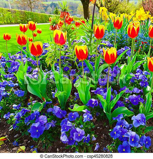 suisse parterre fleurs parc am nag photo de stock rechercher images et clipart csp45280828. Black Bedroom Furniture Sets. Home Design Ideas