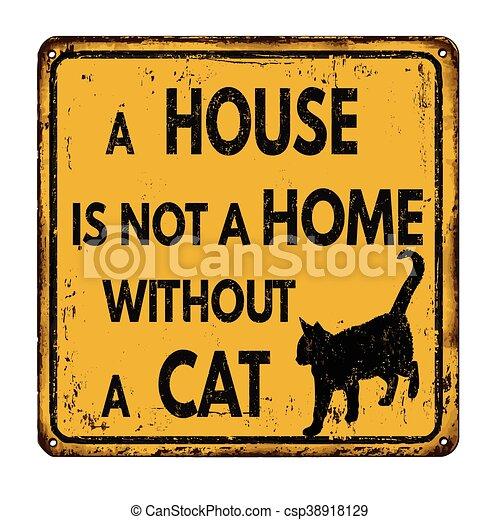 pas, maison, sans, maison, chat - csp38918129