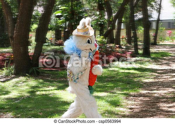 pasaż, królik, wielkanoc - csp0563994