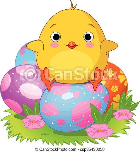 Pollo de Pascua - csp35430050