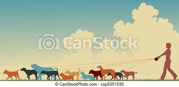 paseante, perro, hembra - csp5351535