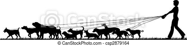 Mujer paseadora de perros - csp2879164