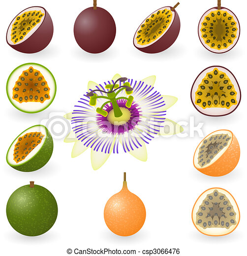 Passion fruit - csp3066476