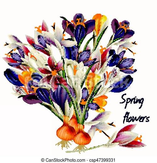 Pastel Colchique Réaliste Vecteur Colors Illustration Eps Fleurs