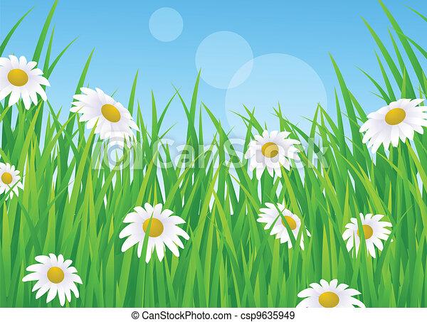 Paisaje con hierba - csp9635949