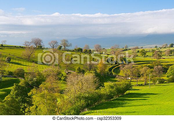 En el prado, la bragueta de Smardale, Gran Bretaña - csp32353309