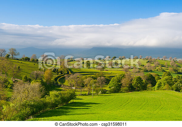 En el prado, la bragueta de Smardale, Gran Bretaña - csp31598011