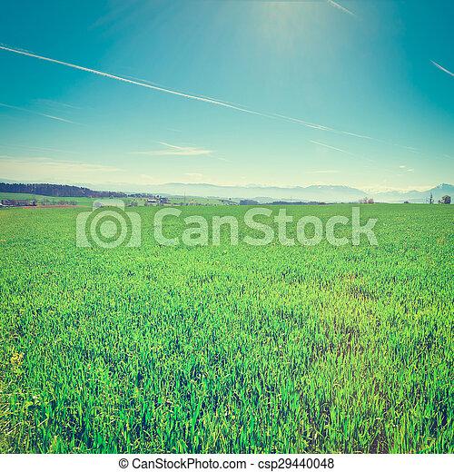 Pasture in Switzerland - csp29440048