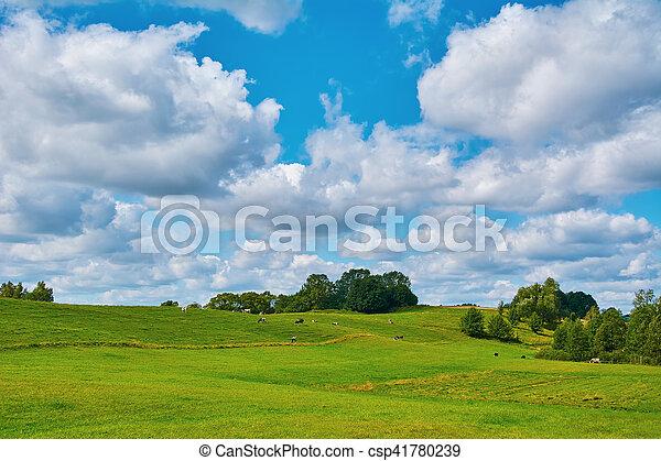 Pasture Land - csp41780239