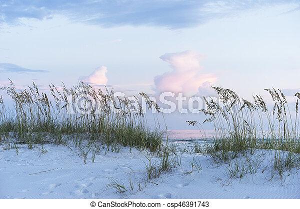 pasztell, zab, lágy, florida, színhely, befest, napnyugta, tenger, tengerpart - csp46391743