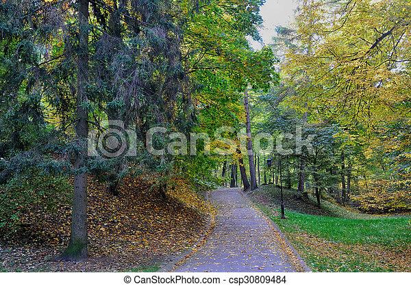 Path in autumn park - csp30809484