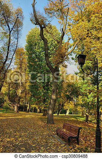 Path in autumn park - csp30809488
