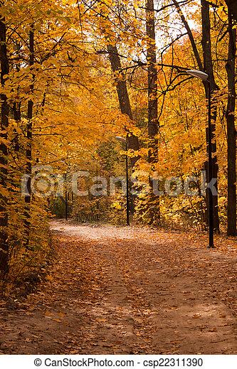 Path in autumn park - csp22311390