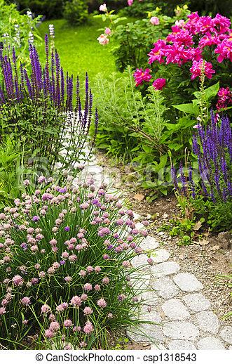 Path in blooming garden - csp1318543