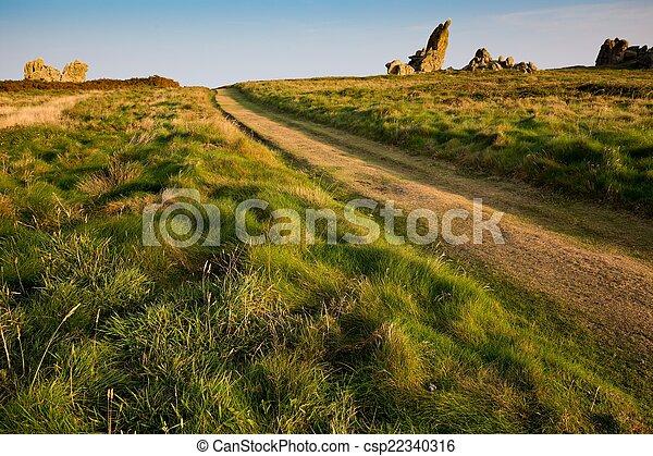 Path in coastline meadow - csp22340316