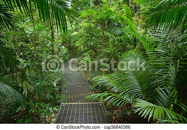 Path - csp36840386