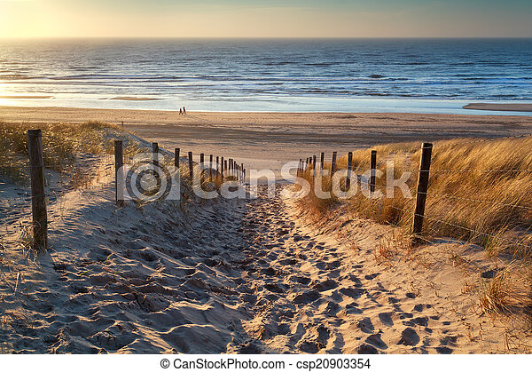 path to the sea at sunset - csp20903354