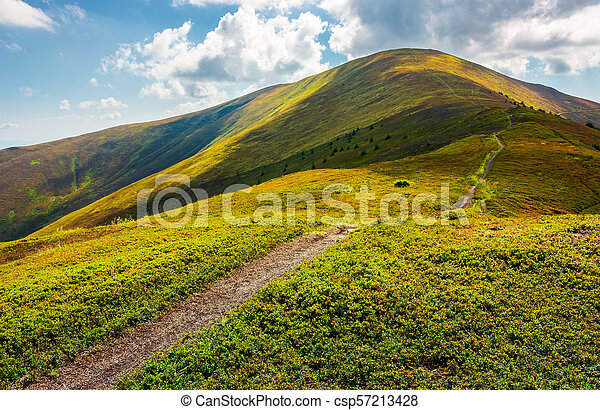 path to the top of the mountain - csp57213428