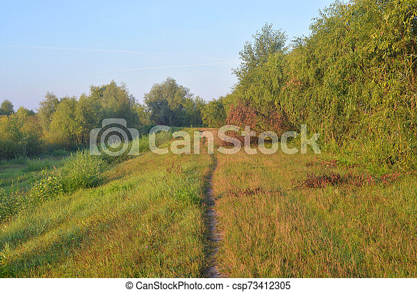 Pathway in the countryside. - csp73412305