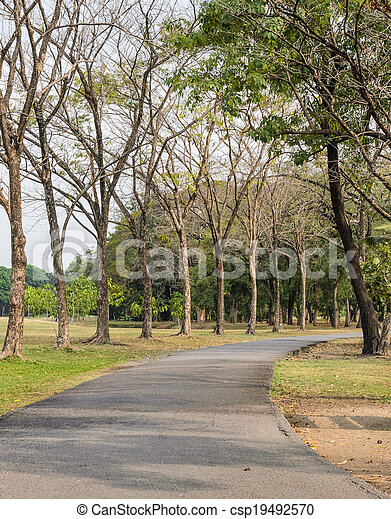 Pathway in the park - csp19492570