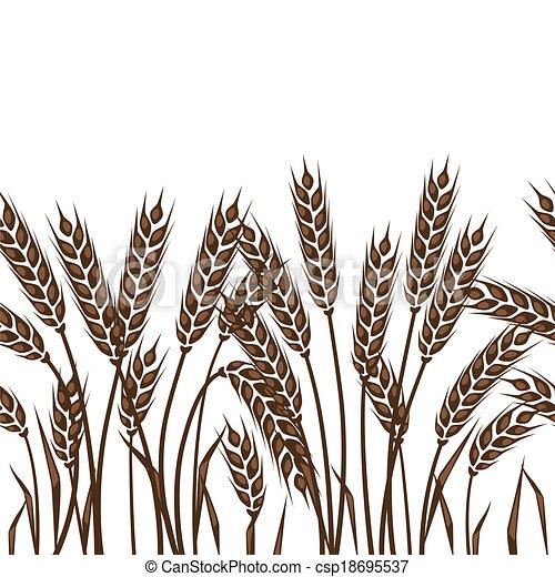 Patrón sin costura con orejas de trigo. - csp18695537