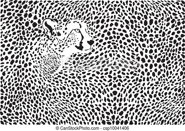 Pattern cheetahs background - csp10041406