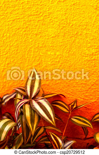 Pattern leaves on a orange wall - csp20729512