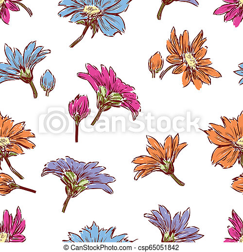 Pattern of the inflorescences of garden daisies - csp65051842
