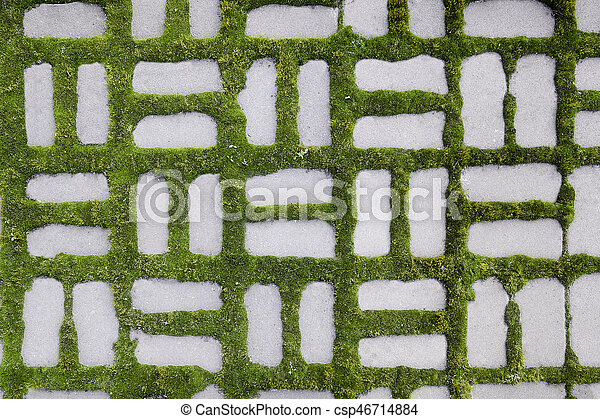 pattern with a sprouted grass I - csp46714884