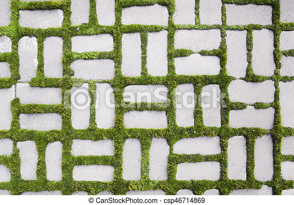 pattern with a sprouted grass III - csp46714869