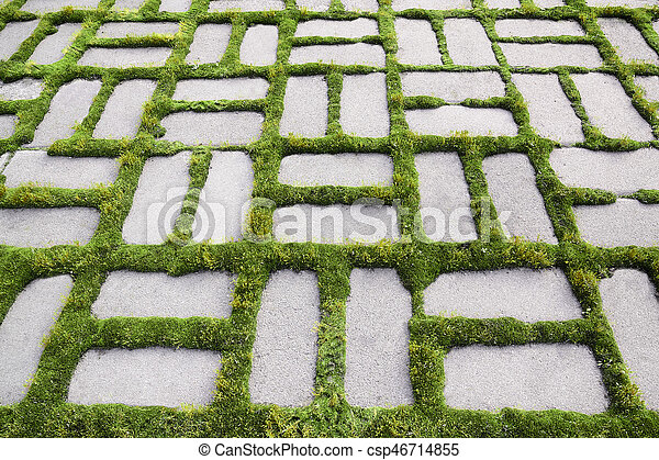 pattern with a sprouted grass IV - csp46714855