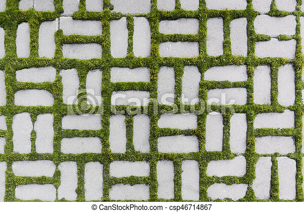 pattern with a sprouted grass - csp46714867