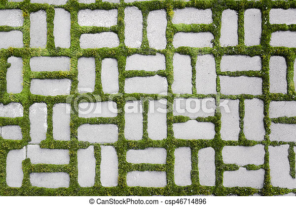 pattern with a sprouted grass - csp46714896