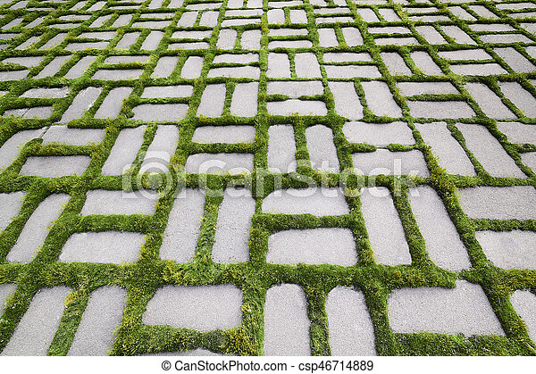 pattern with a sprouted grass V - csp46714889