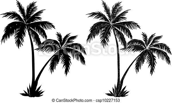 paume, silhouettes, arbres, noir - csp10227153