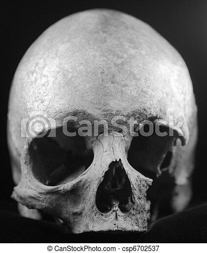 pauroso, nero, cranio umano, sinistro - csp6702537