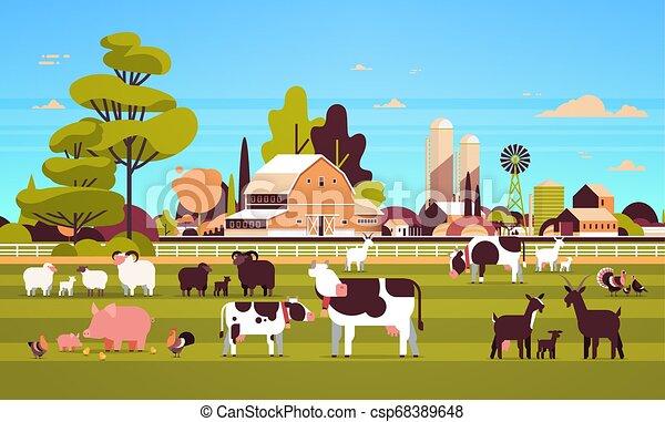 Animales de granja pastoreando vacas de cabra de cerdo cordero de pavo pollo diferentes animales domésticos crían concepto de granja plana paisaje campestre plano horizontal - csp68389648